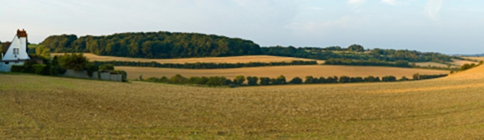 Kent countryside
