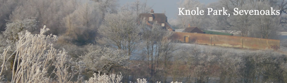 Knole Park, Sevenoaks in the snow